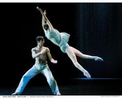 Nederlands_Dans_Theater_GODS_AND_DOGS_3__Joris_Jan_Bos_Medium.jpg