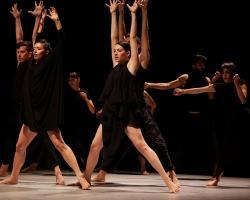 Vertigo_Dance_CompanyYama_Gadi_Dagon_β9_Medium.jpg